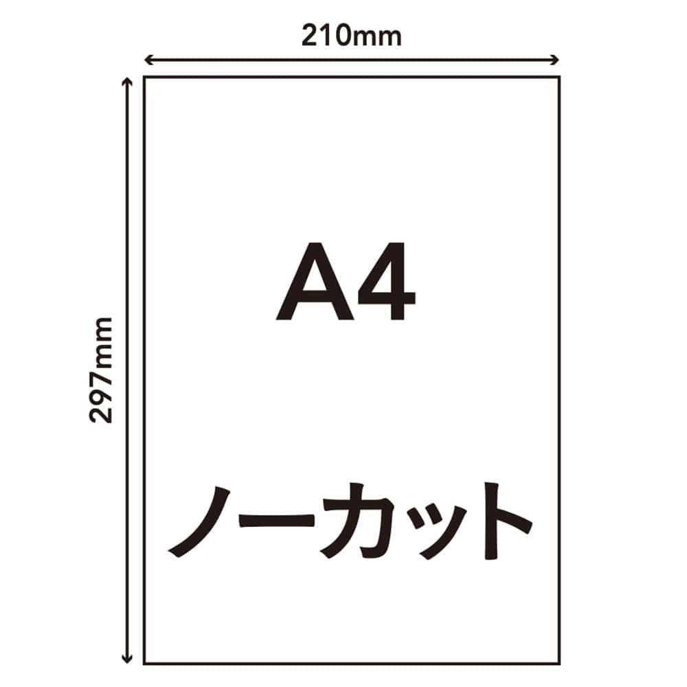 ラベルシール A4サイズ 1面×20枚入 HS-3-20