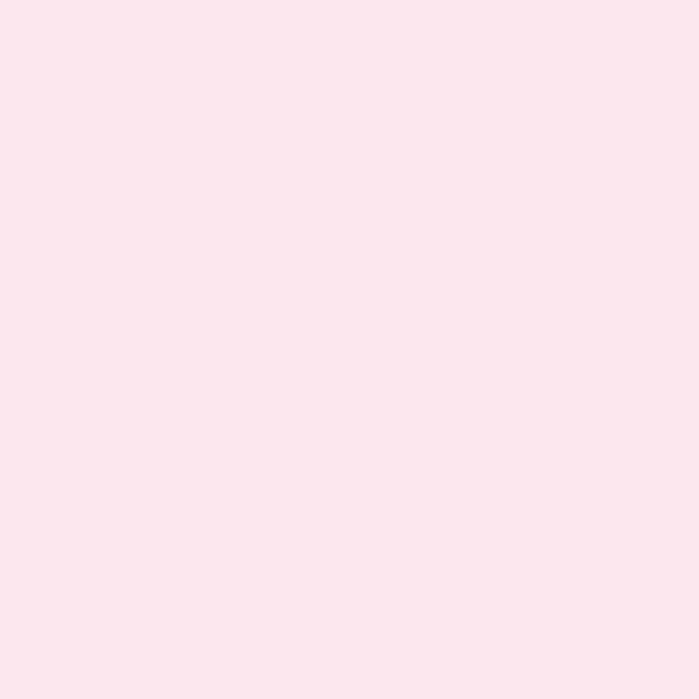 【Web限定】CAINZ 室内用塗料 ホワイティカラーズ 4kg サクラ【別送品】