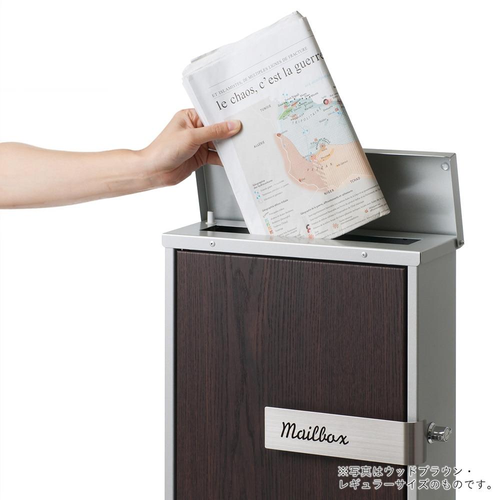 カインズ オリジナル 郵便ポスト レガート ラージ WH CH-LPL-51【別送品】