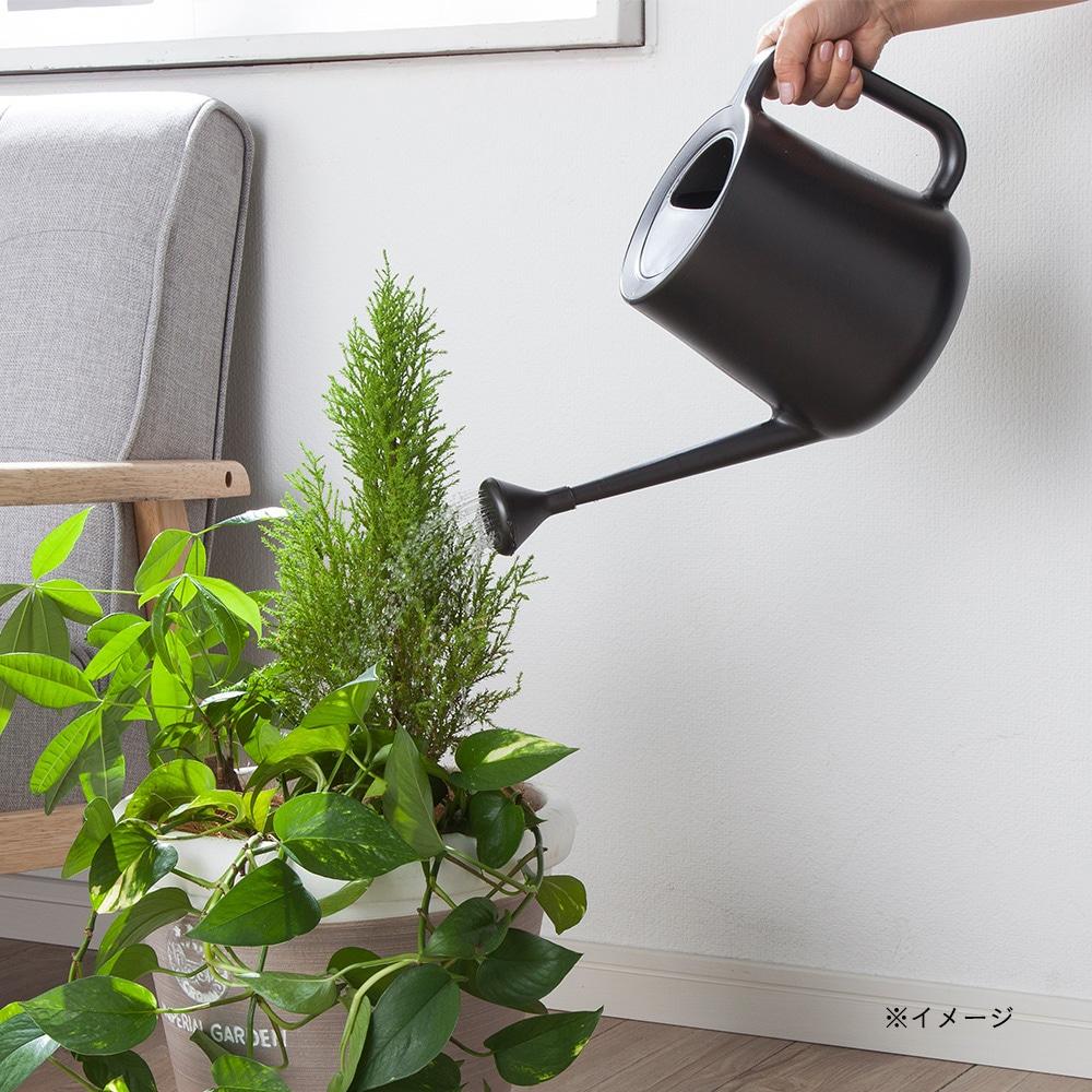 室内で使いやすいじょうろ Potis(ポティス) 2.5L ガーデングリーン