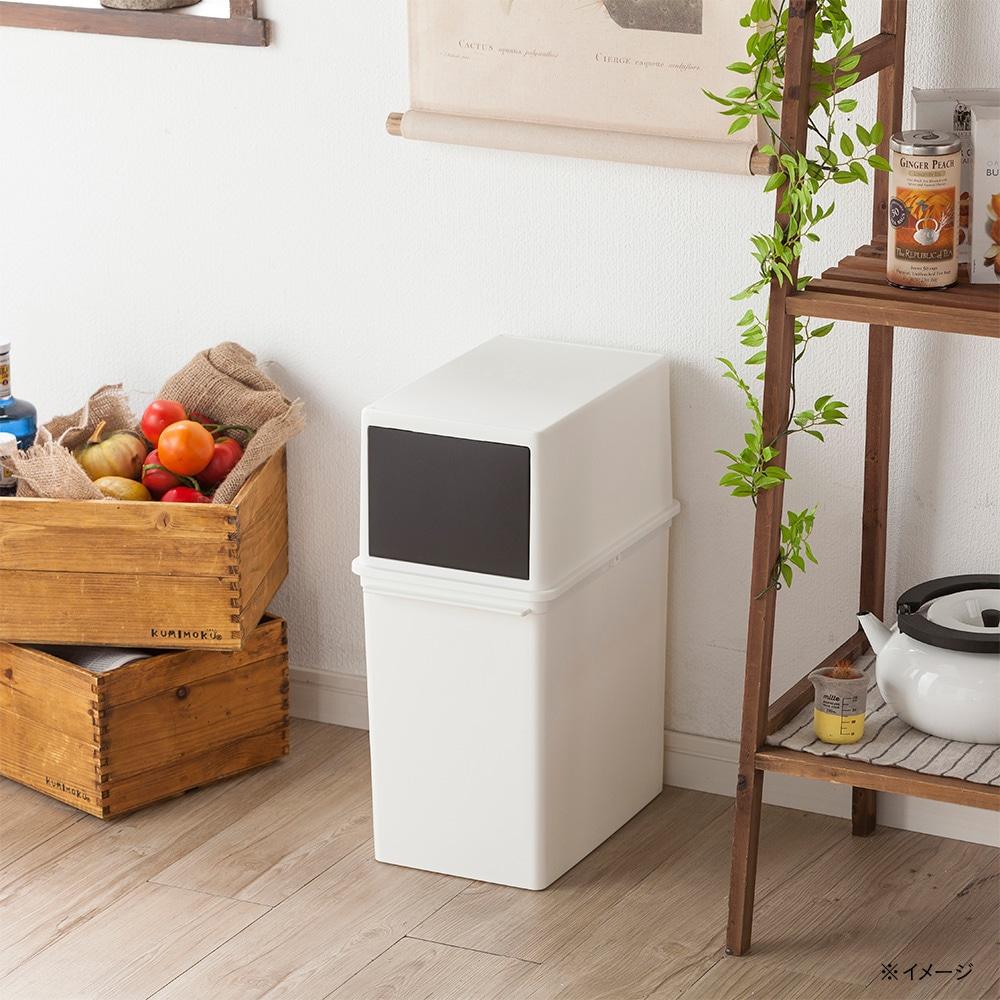 キッチン用分別フロントオープンダスト17L ホワイト