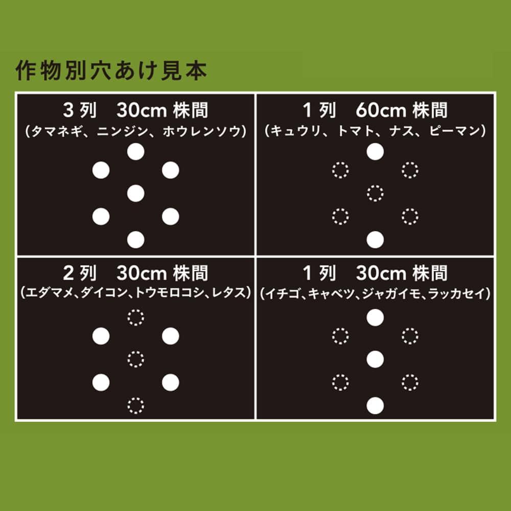 穴あけ簡単菜園マルチ 黒 0.02×95×50m