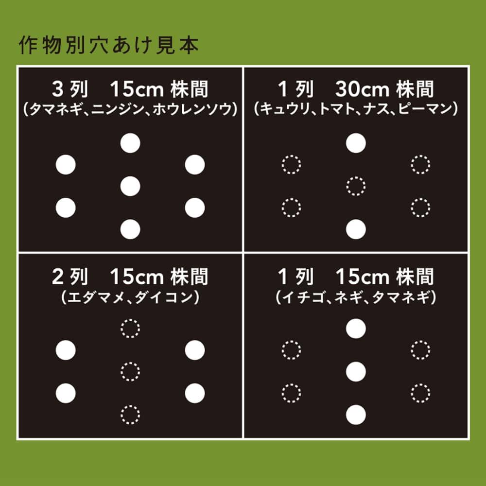 【店舗限定】穴あけ簡単菜園マルチ 黒 0.02×95×10m