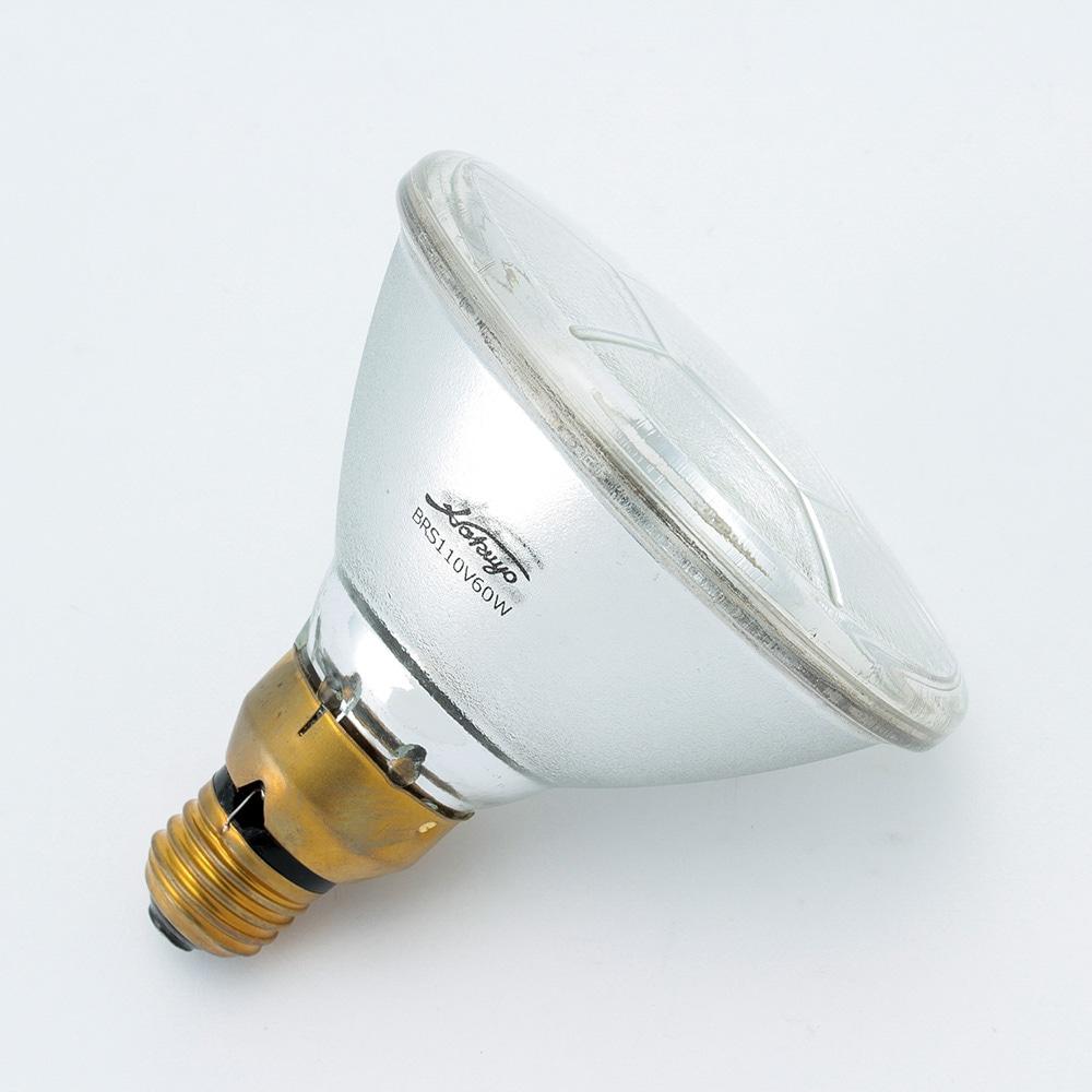 屋外ビームランプ 75形 集光 EBF110V60W/N