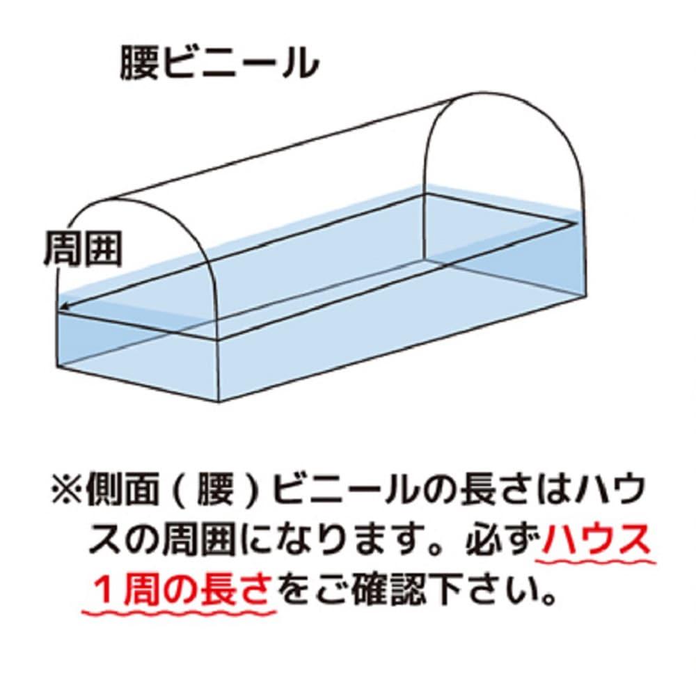 腰ビニール 0.1×150×48(片テハ)
