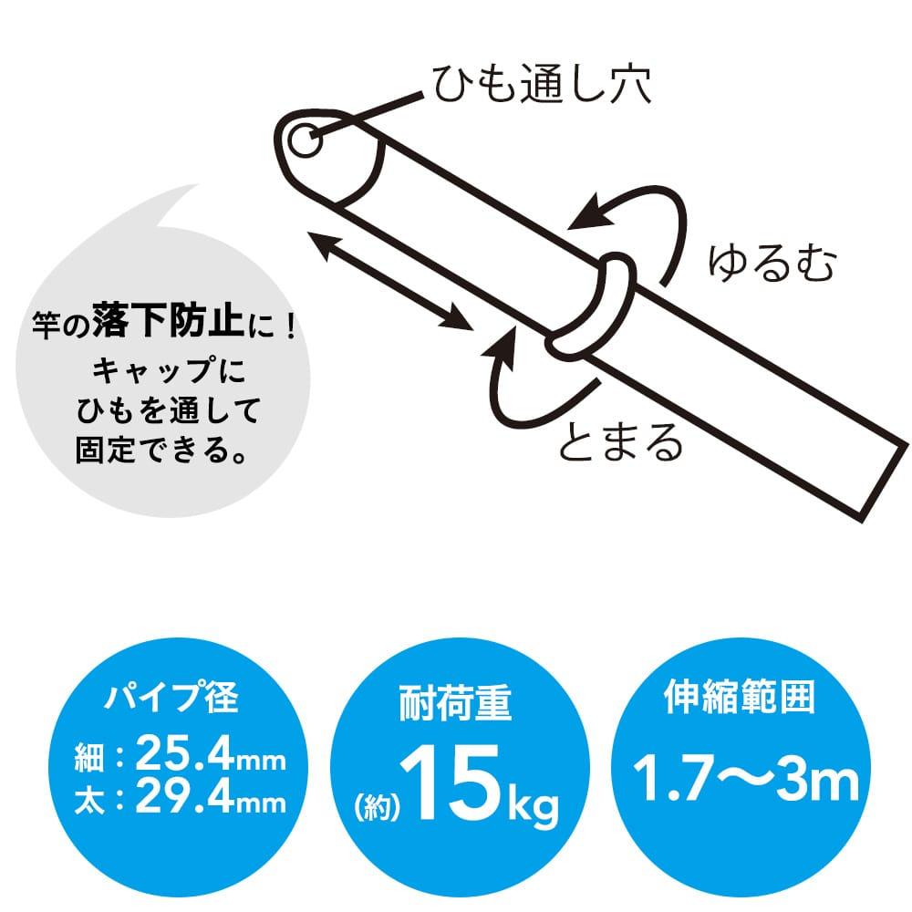ステンレス伸縮竿 3m