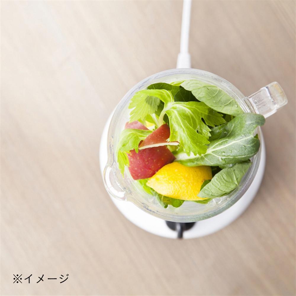 ジュースミキサーFJM-607