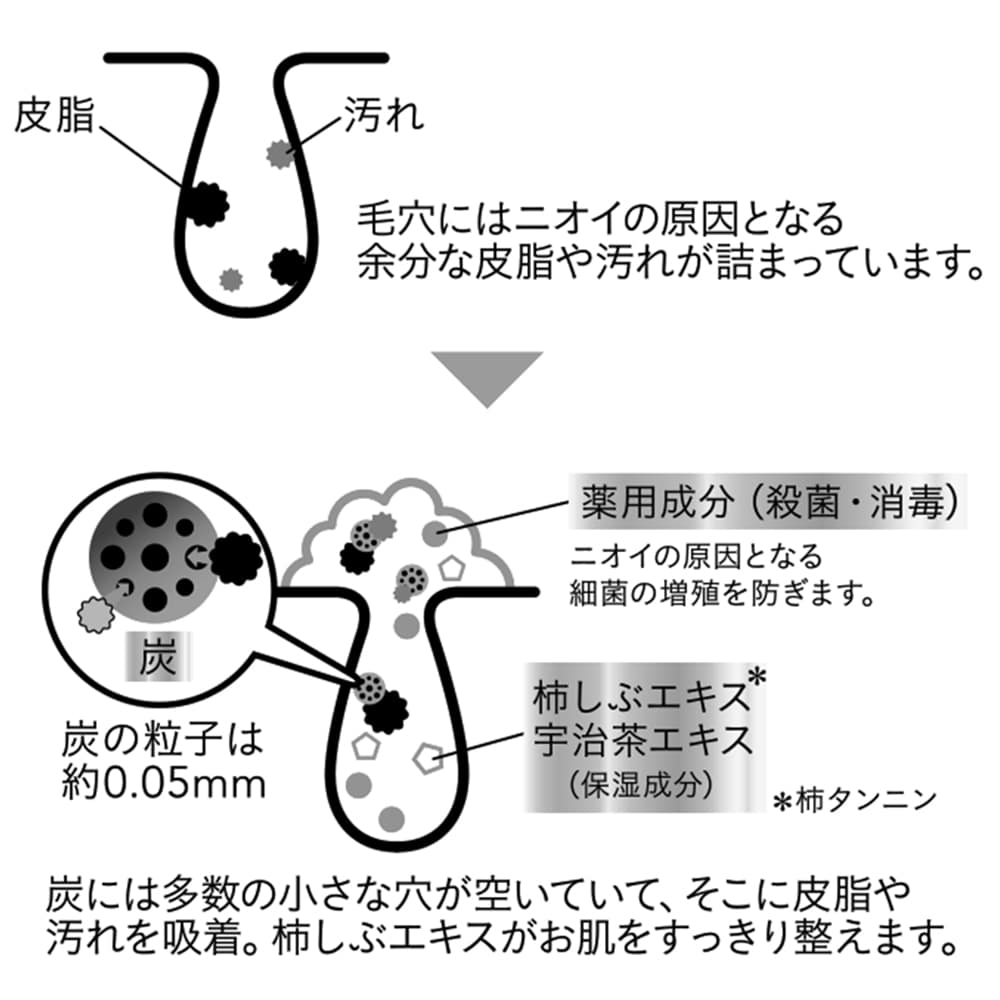カインズ 薬用柿しぶエキス配合 ボディソープEX ペパーミントの香り 詰替用 380ml
