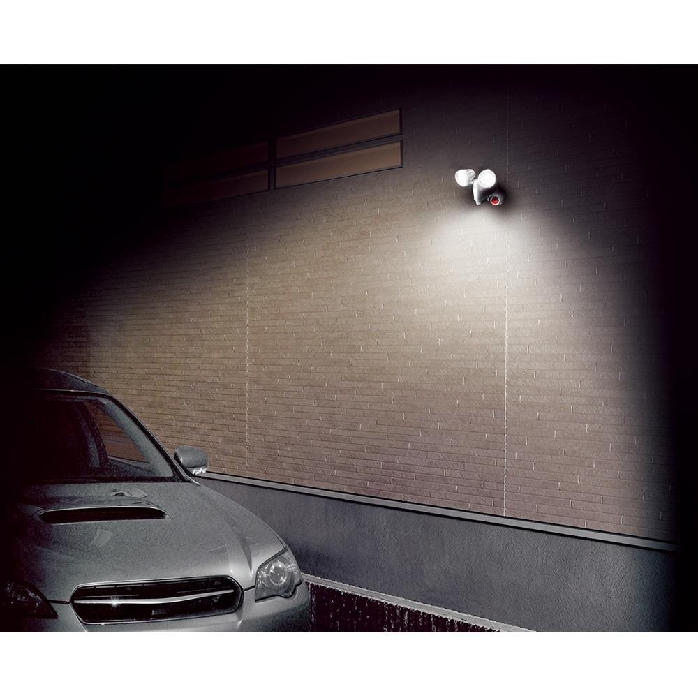 EARTH MAN 録画機能付6W LEDセンサーライト ダブル