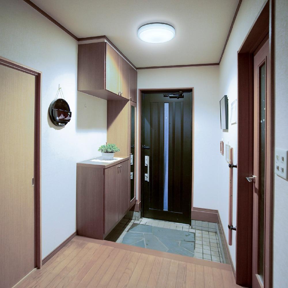 オーム電機 LED内玄関灯 センサー 昼光色 LT-Y18D-G 07-9904