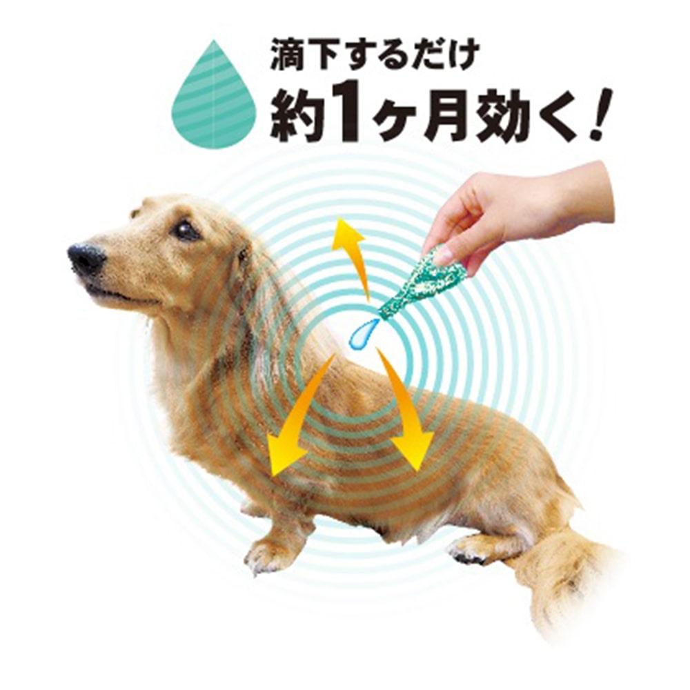 ペッツテクトプラス フォースガード 小型犬 5本