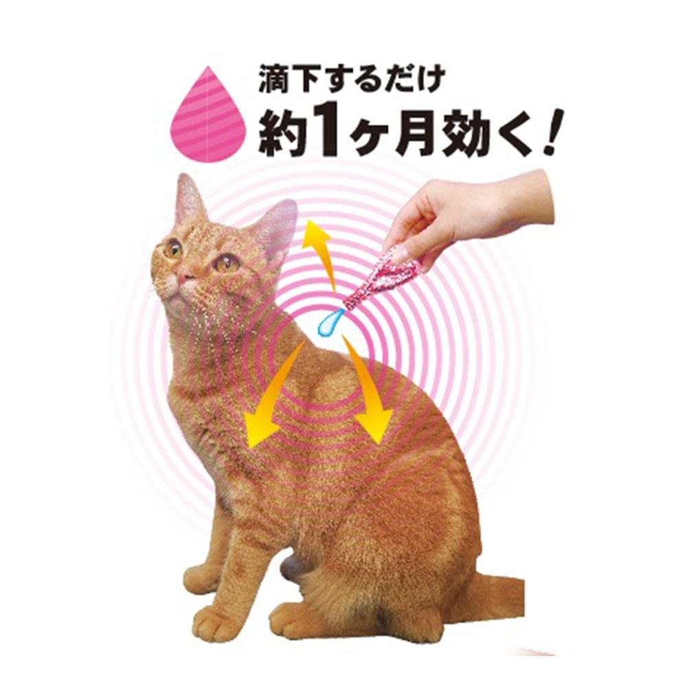 ペッツテクトプラス フォースガード 猫 5本