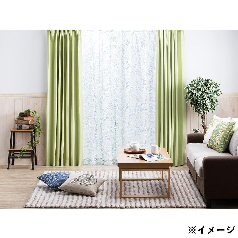 ボイルレースカーテン ガーデン グリーン 100×175 2枚組