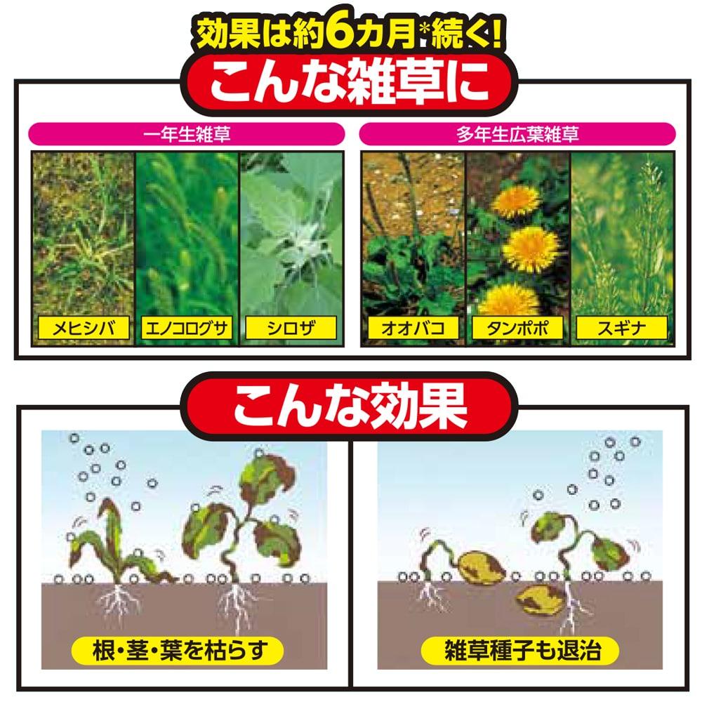 カンタンにまける除草剤 雑草退治 かれるくん 2kg