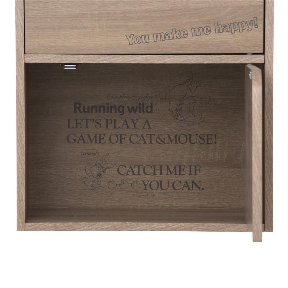 カラーボックス WB ドア付3段収納ボックス ナチュラルエルム