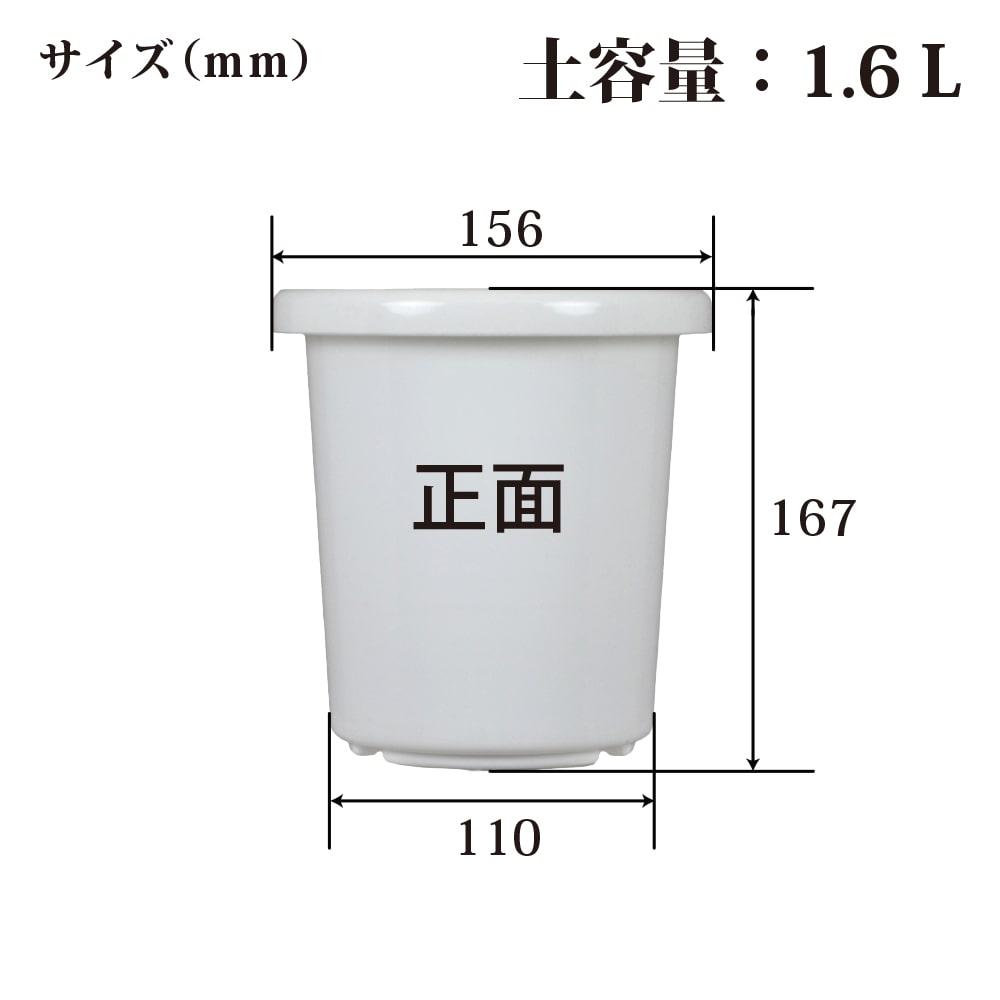 長鉢F型 5号 ホワイト