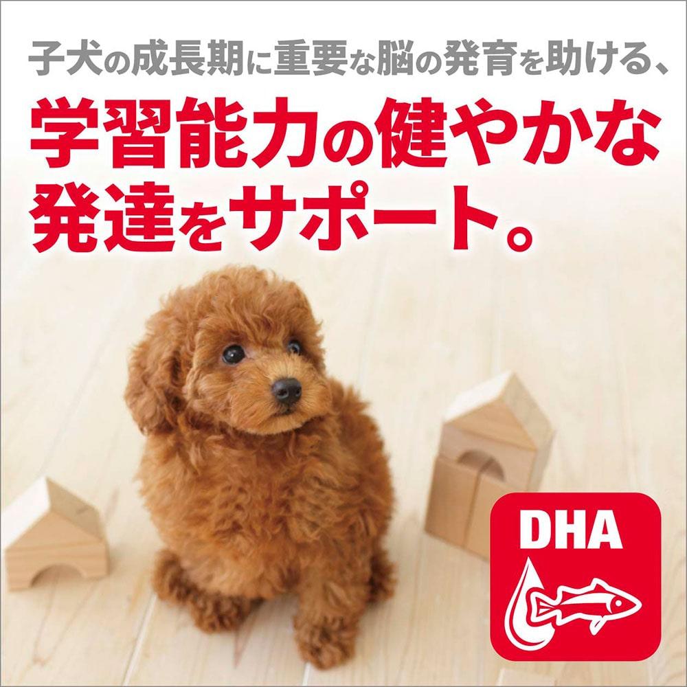 サイエンス・ダイエット 小型犬用 パピー(子いぬ用) 1.5kg
