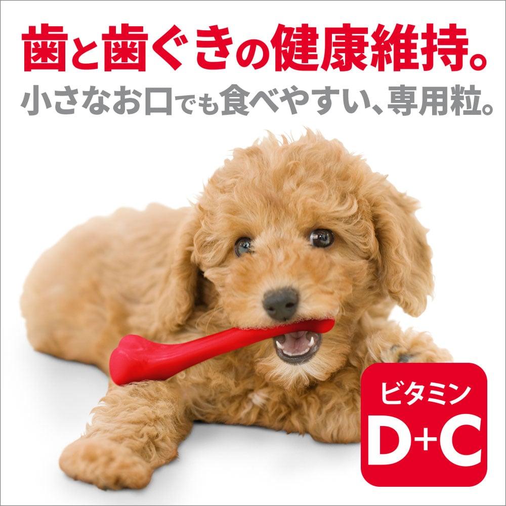 サイエンス・ダイエット 小型犬用 アダルト(成犬用) 3kg