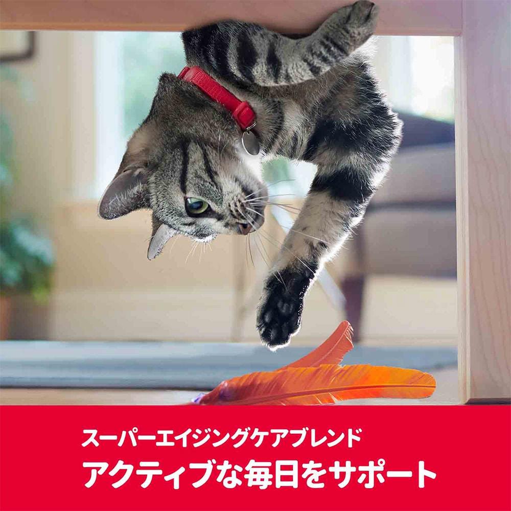 サイエンス・ダイエット〈プロ〉猫用 【健康ガード アクティブシニア】 7歳からずっと 1.5kg