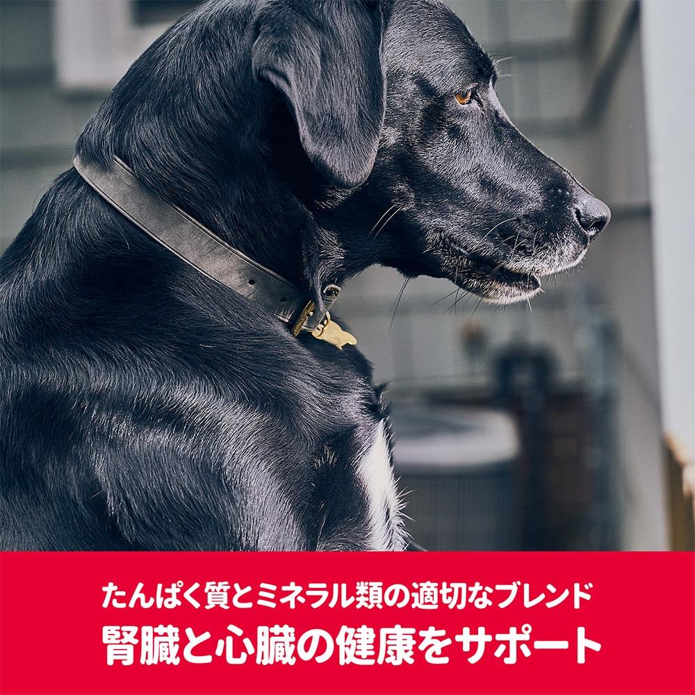 【店舗限定】サイエンス・ダイエット<プロ>犬用 (健康ガード 腎臓・心臓) 小粒 7歳〜1.6kg