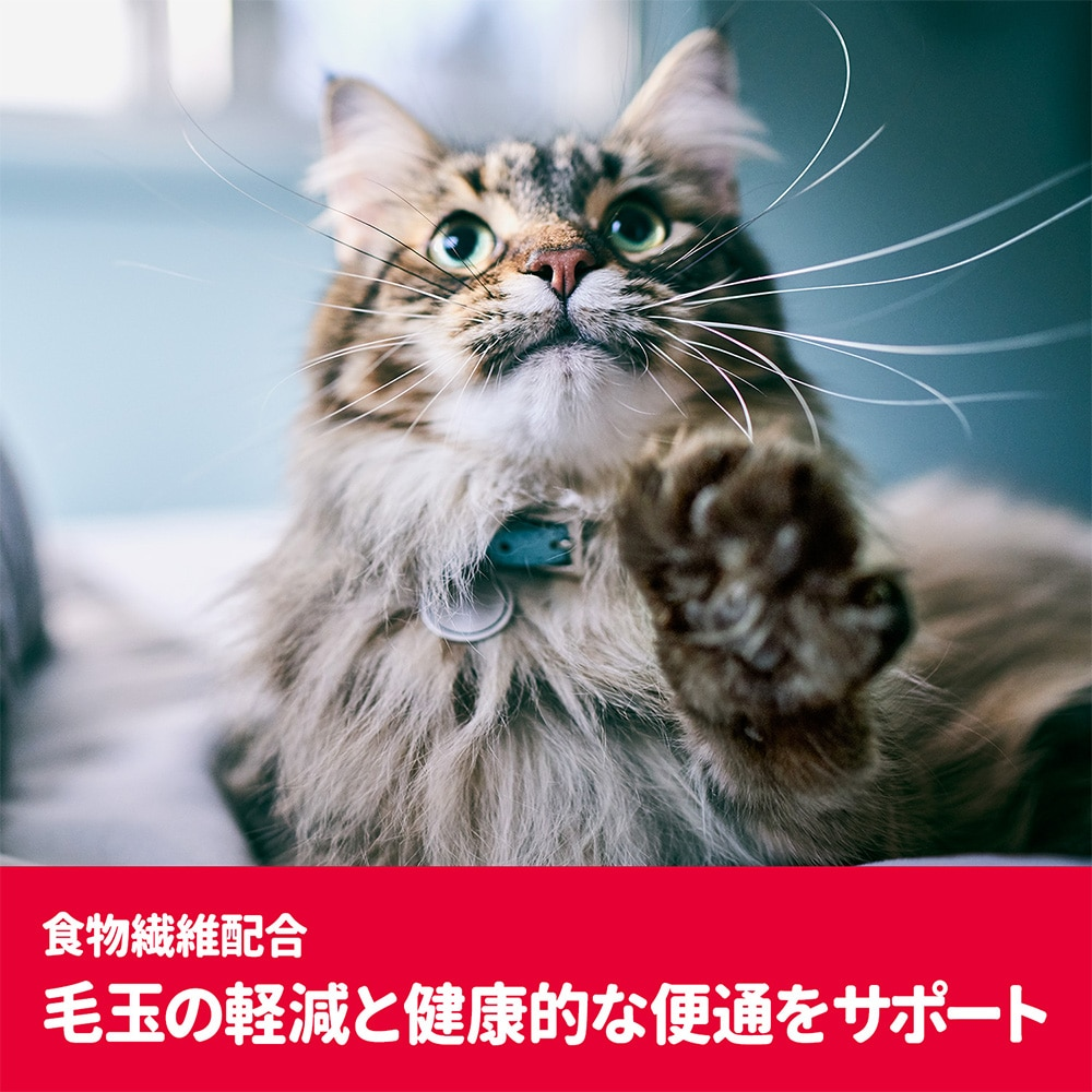 【店舗限定】サイエンス・ダイエット<プロ>猫用 (健康ガード 便通・毛玉) 1〜6歳 1.5kg