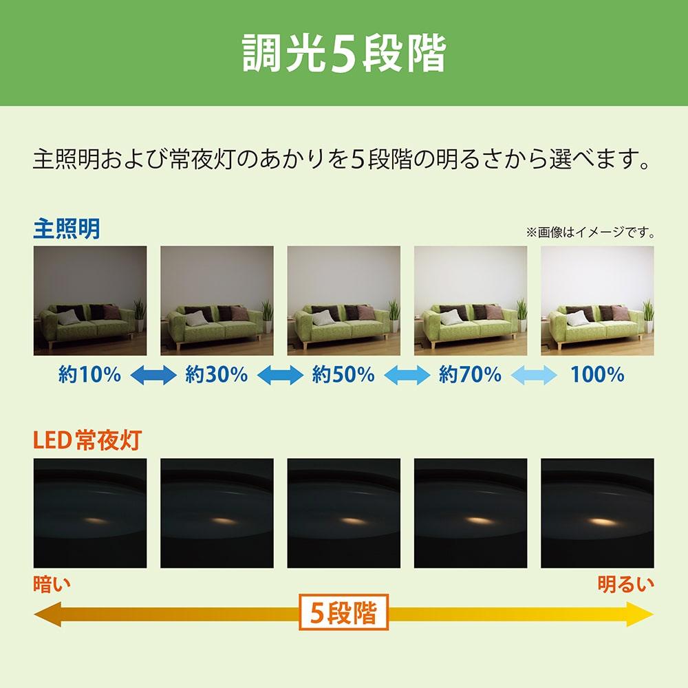 NEC LEDシーリング ~8畳 調光タイプ HLDZ08604