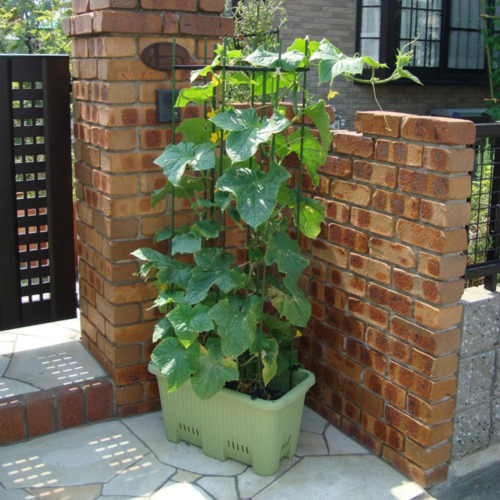 楽々菜園プランター 深型 600支柱用フレーム付 サラダグリーン