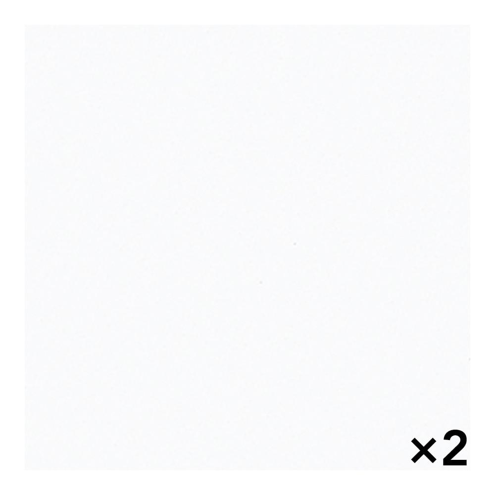 【SU】【ケース販売】メラタックウイルテクト GYK6000RPL74 895×895 2枚入り