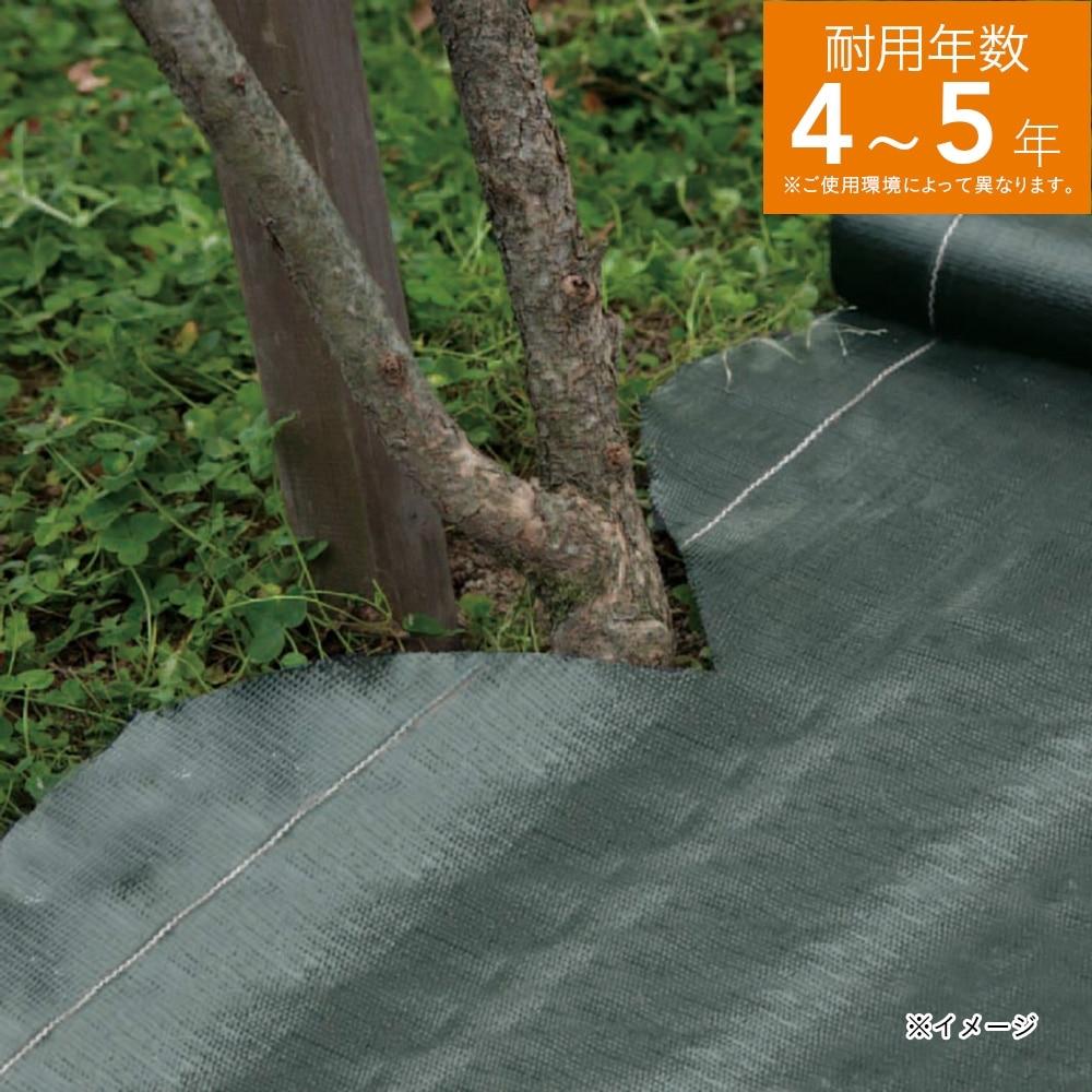 高密度防草シート 1×50m ダークグリーン