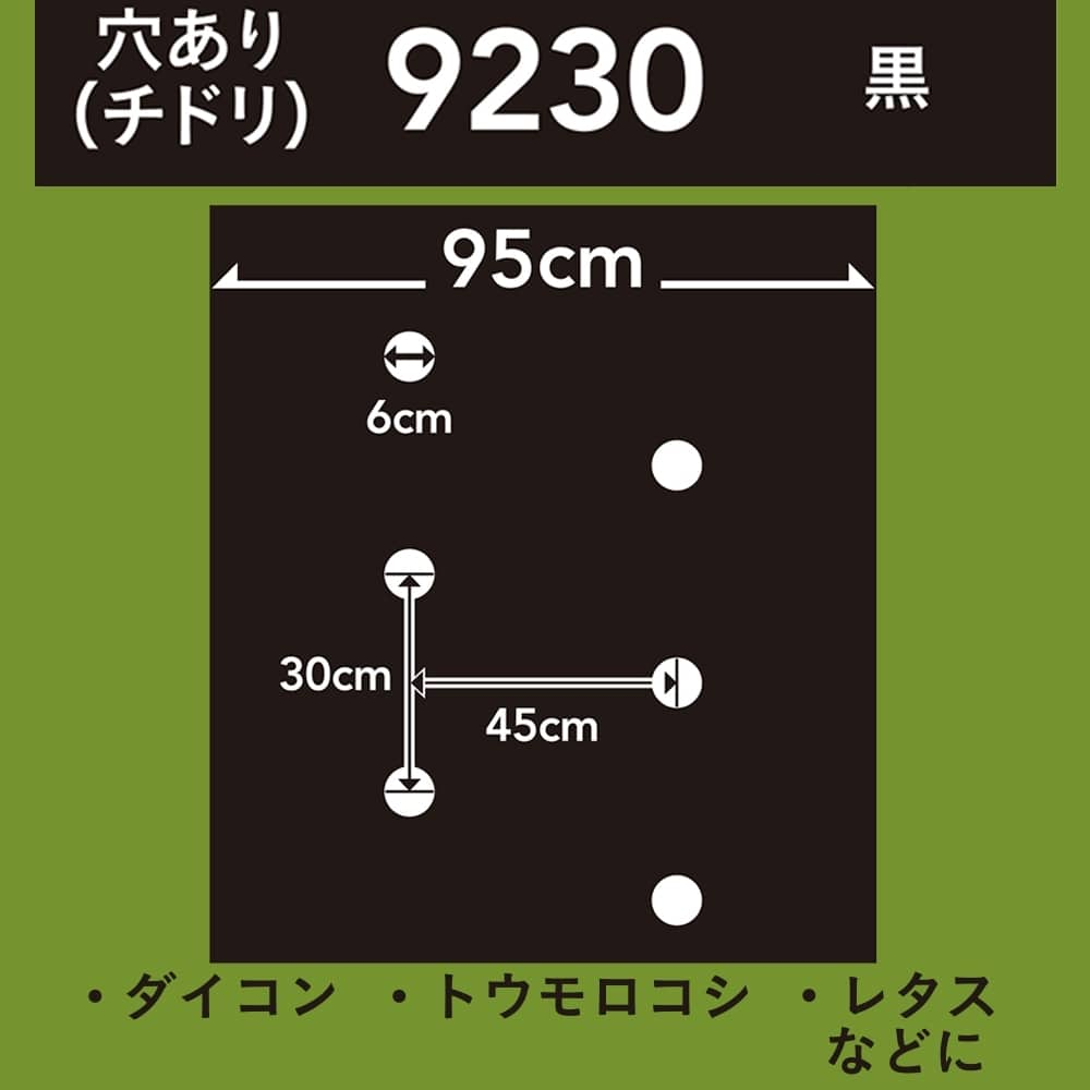 菜園ホールマルチ 黒 9230 50m