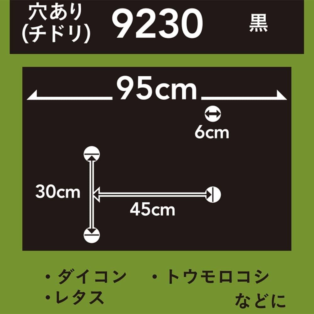 菜園ホールマルチ 黒 9230 10m