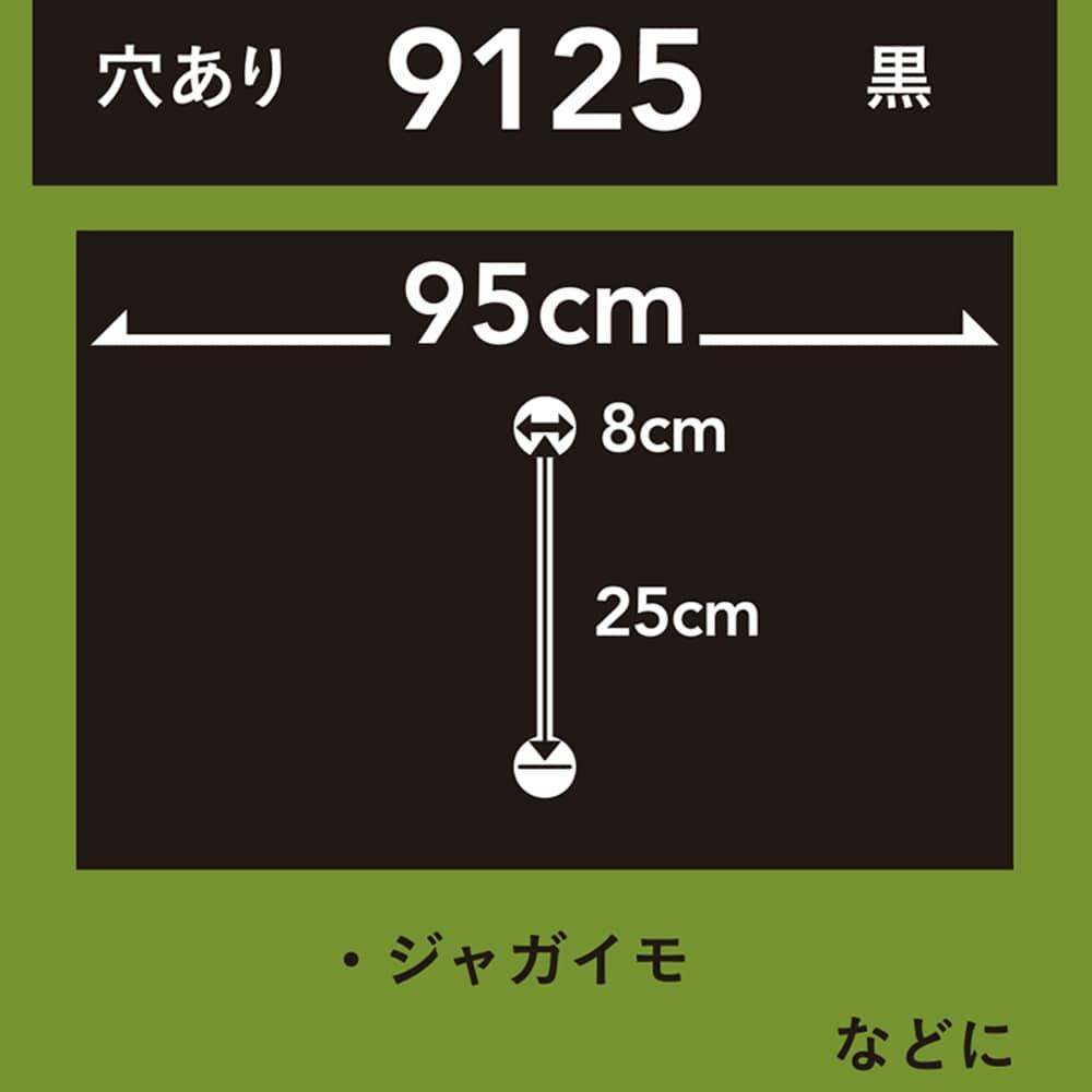 菜園ホールマルチ 黒 9125 10m
