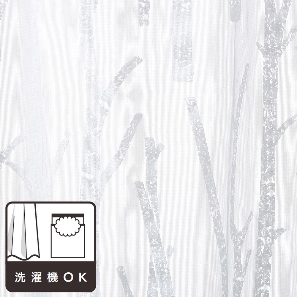 レースカーテン ホワイトバーチ 100×175 2枚組