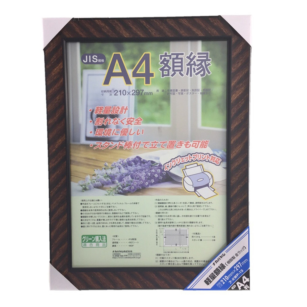 ナカバヤシ 軽量額縁 樹脂製 金ラック A4判 フ-KWP-13