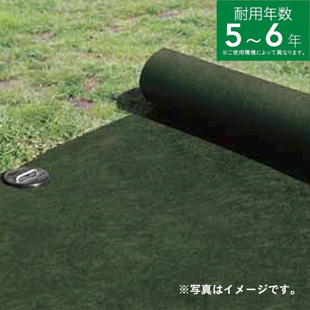 【数量限定】雑草ブロックシート 1×10m グリーン