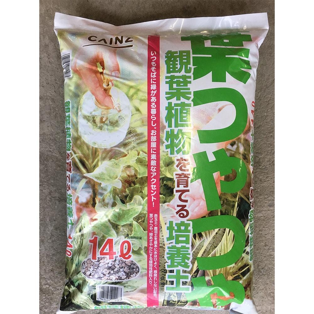 葉つやつや観葉植物を育てる培養土 14L H