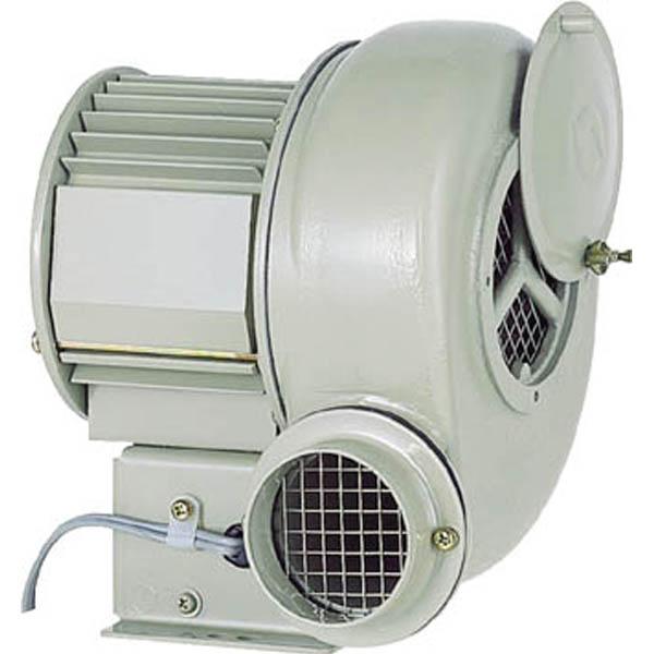 【CAINZ DASH】昭和 電動送風機 汎用シリーズ(0.25kW)