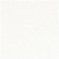【店舗受取送料無料】【SU】アイカセラール FANA1805ZMN 3×8【別送品】