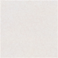【店舗受取送料無料】【SU】アイカセラール FANA1966ZMN 3×6【別送品】