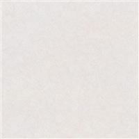 【店舗受取送料無料】【SU】アイカセラール FANA1966ZMN 3×8【別送品】