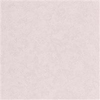 【店舗受取送料無料】【SU】アイカセラール FANA1995ZMN 3×6【別送品】