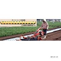 ホーリーシート N9230 60φ チドリ穴 200m 5本P