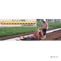 ホーリーシート N9230 80φ チドリ穴 200m 5本P