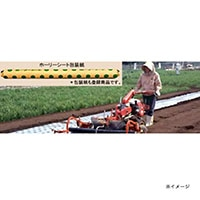ホーリーシート N9235 80φ チドリ穴 200m 5本P