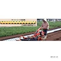 ホーリーシート N9245 80φ チドリ穴 200m 5本P