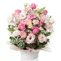 お祝い用フラワーアレンジ/ピンク NO.3【別送品】【要注文コメント】