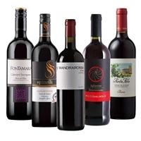 [基本送料無料]豪華・受賞ワイン入り イタリア赤ワイン5本セット【別送品】