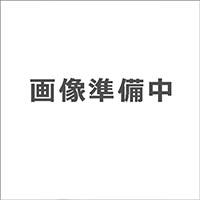 オリジナルカーポート塩ビ波板仕様用  サポート柱2本[型番:CHCD2ST]【別送品】