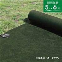 【訳あり商品】 雑草ブロックシート緑 1×50m【パッケージ破損】