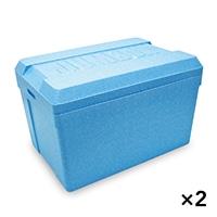 【ケース販売】発泡ケース TI−650J 蓋付74.4L×2個[4546516002023×2]